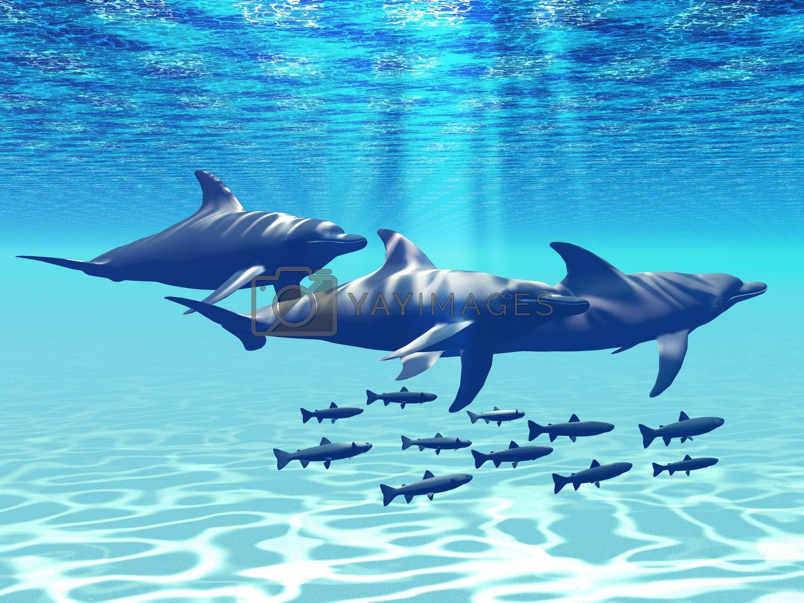 Three Bottlenose Dolphins swim with a group of reef fish.