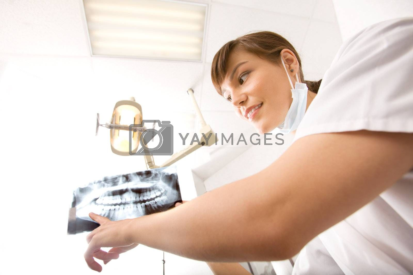 A dentist showing an x-ray of adult teeth
