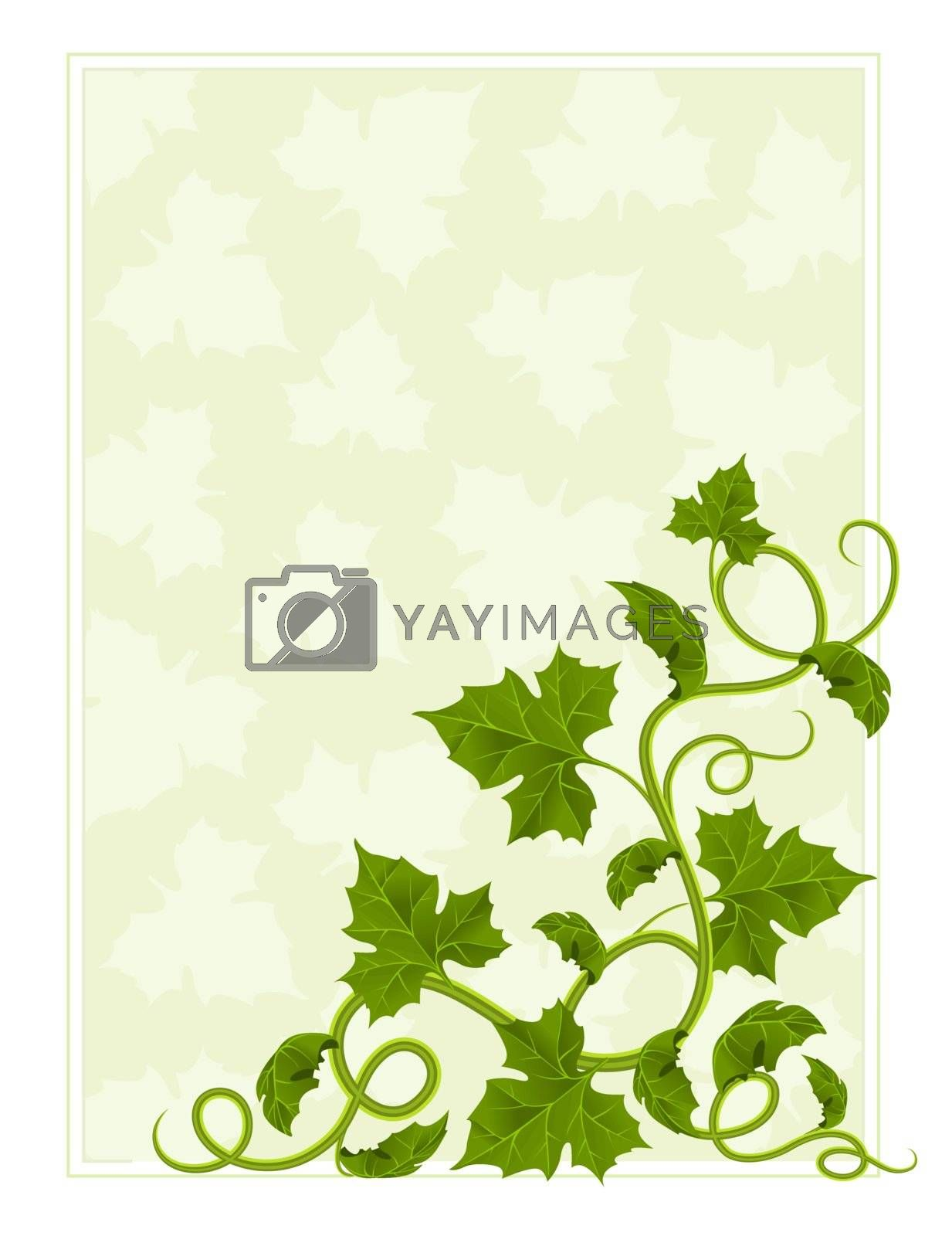 floral frame with willow and green leaf vector illustration