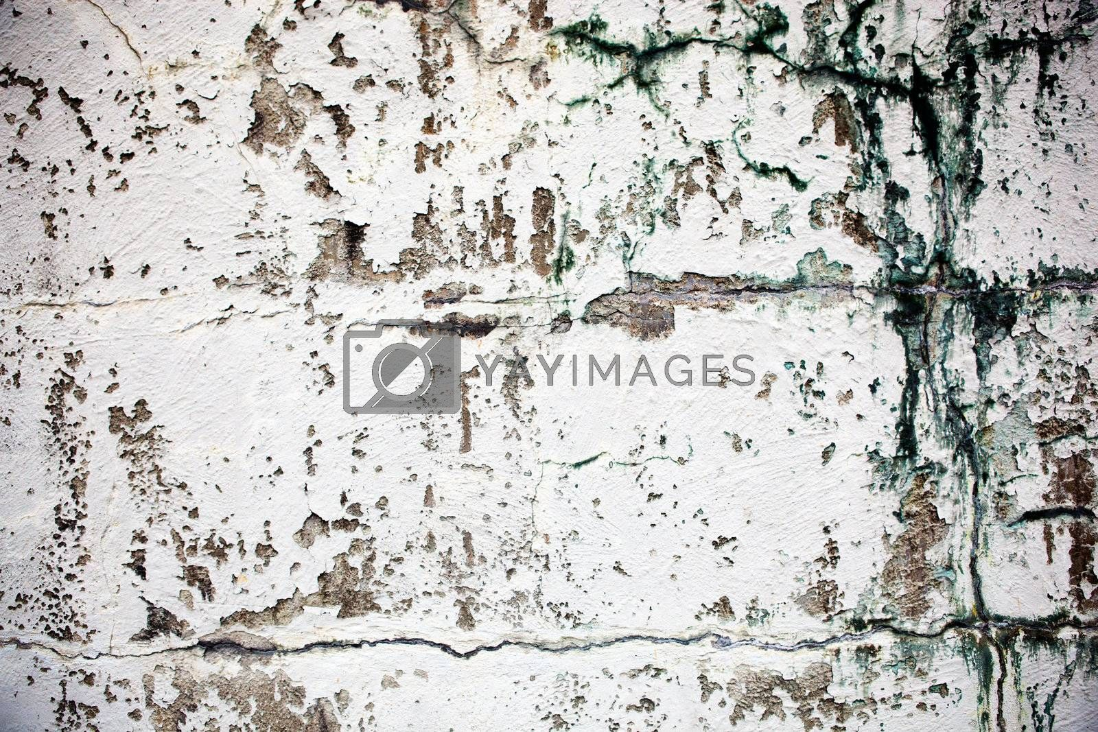 An old wall texture, grunge white paint