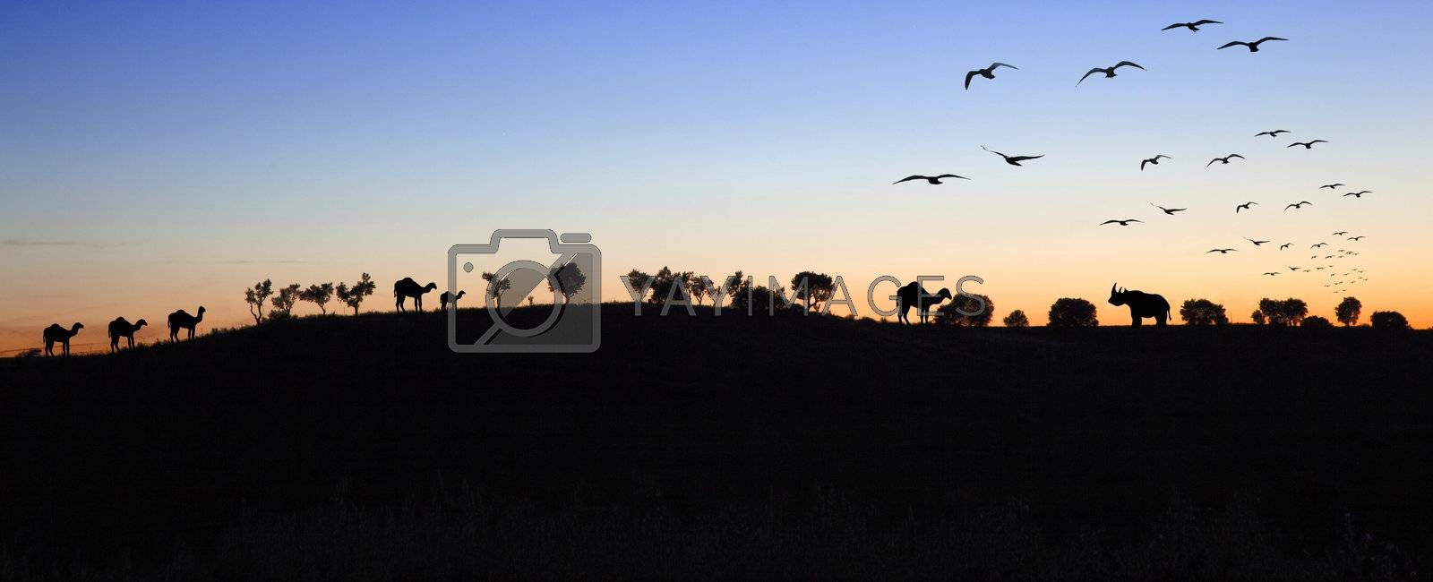 Sunset landscape with silhouettes of animals and trees