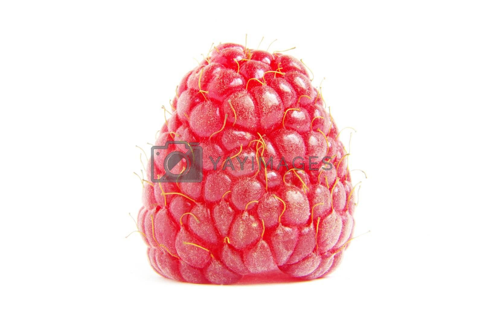 Ripe raspberry on a white background