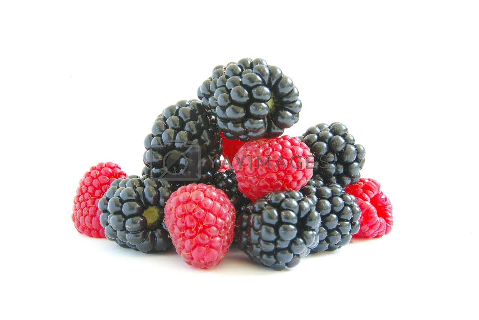 blackberry and raspberry on  white isolated background