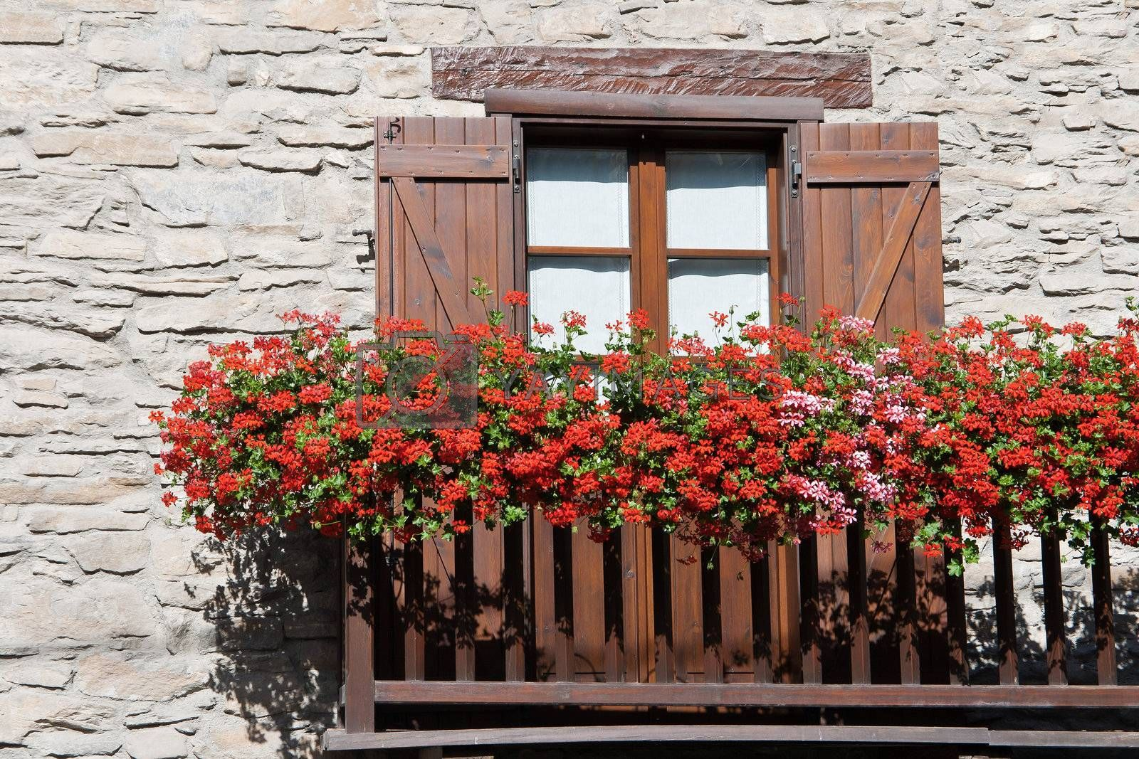 characteristic alpine balcony with red and pink geranium flowers