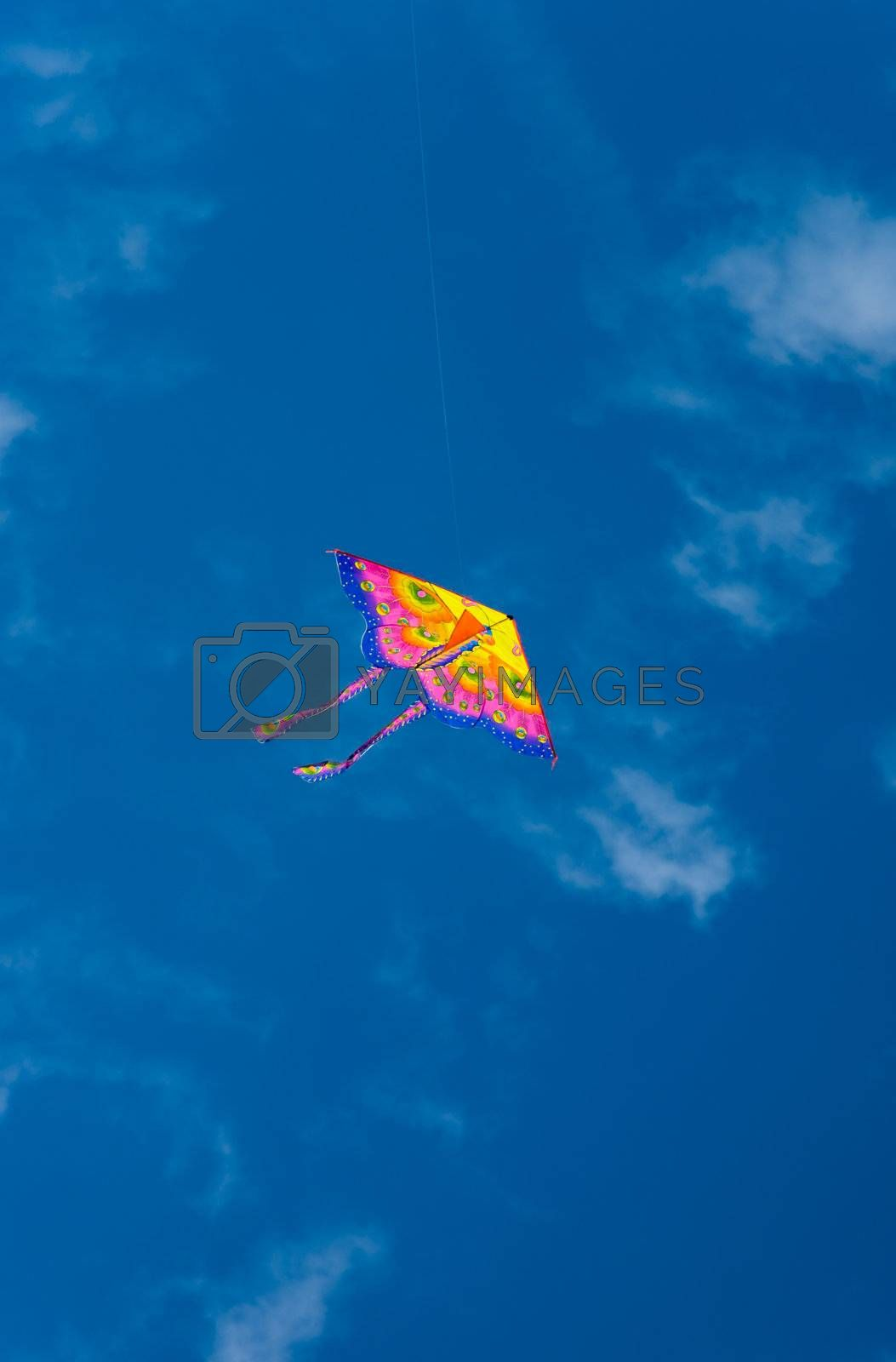 Royalty free image of Colorful kite in blue sky by iribo