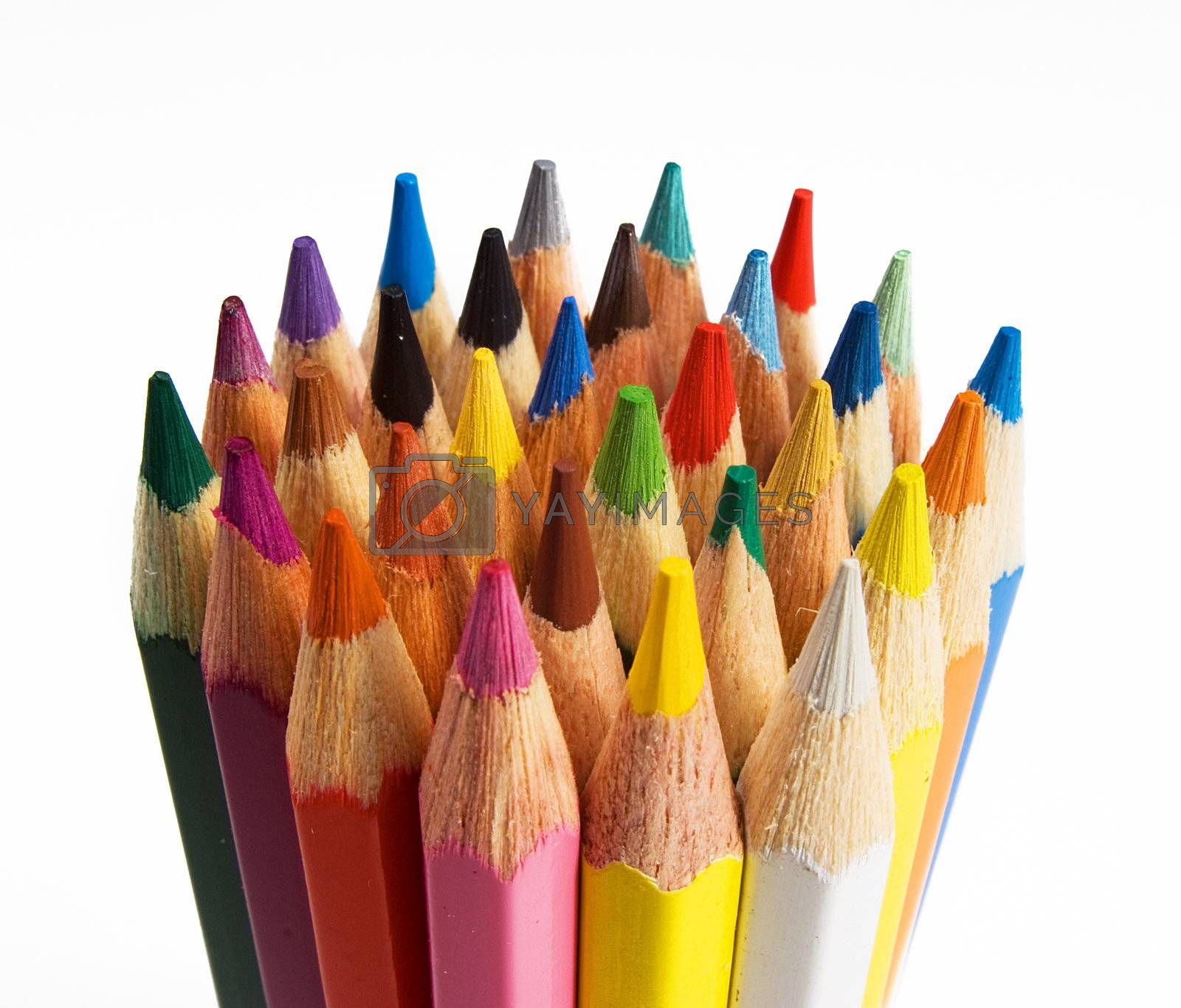 Royalty free image of Group of colored pencils are on the white background by BIG_TAU