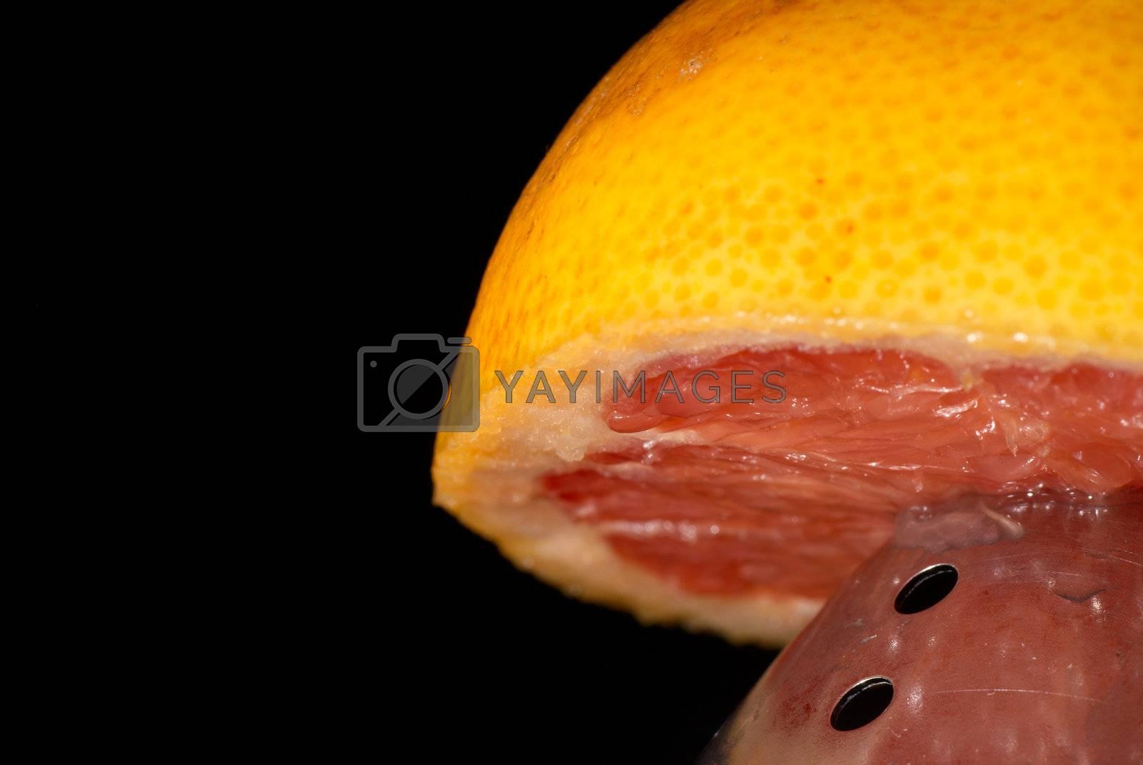 Royalty free image of Juicer by hemeroskopion