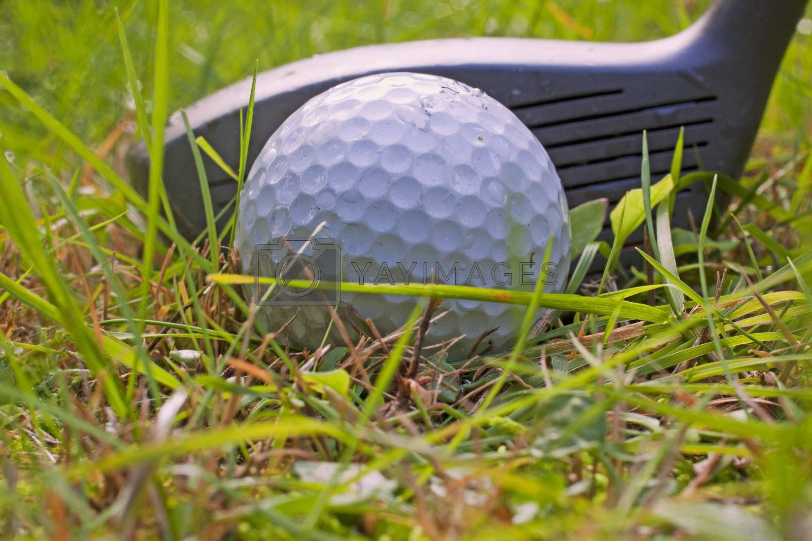 Royalty free image of Golf by Koufax73