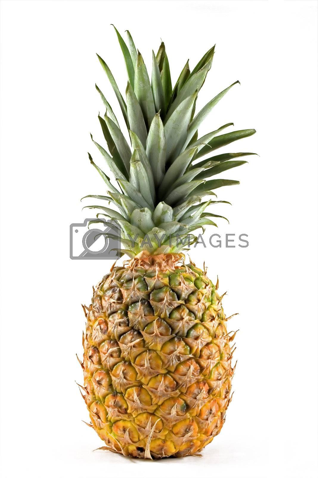Pineapple by PauloResende