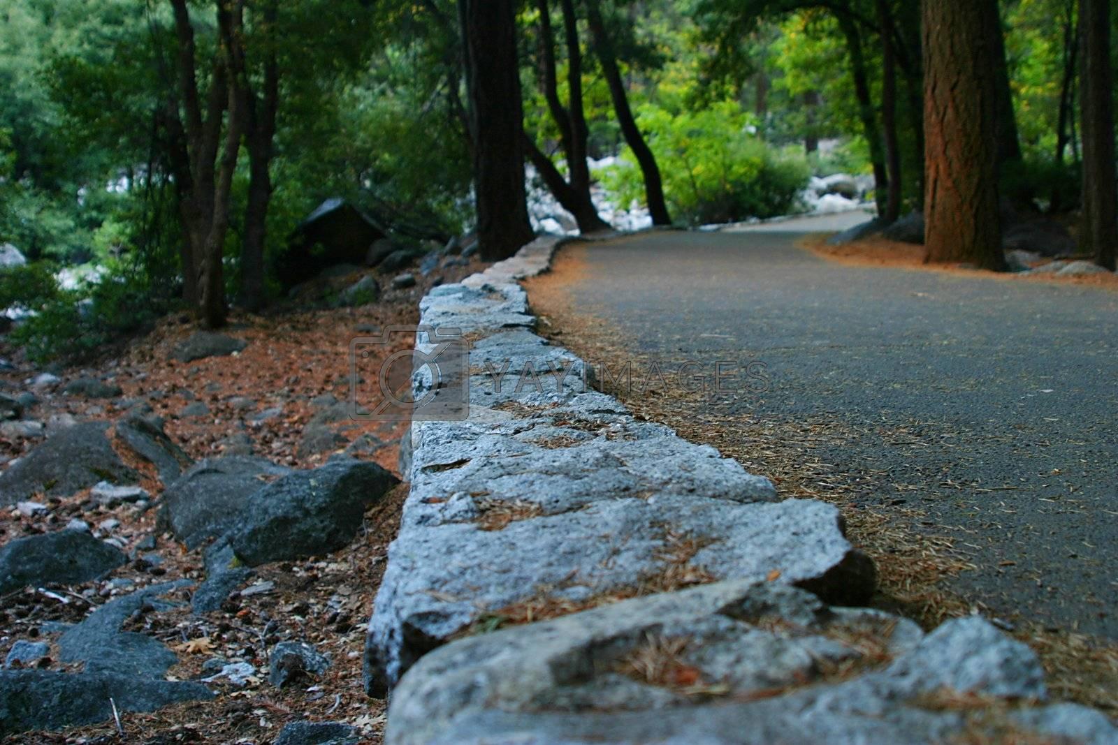 Yosemite Walk Way by hlehnerer