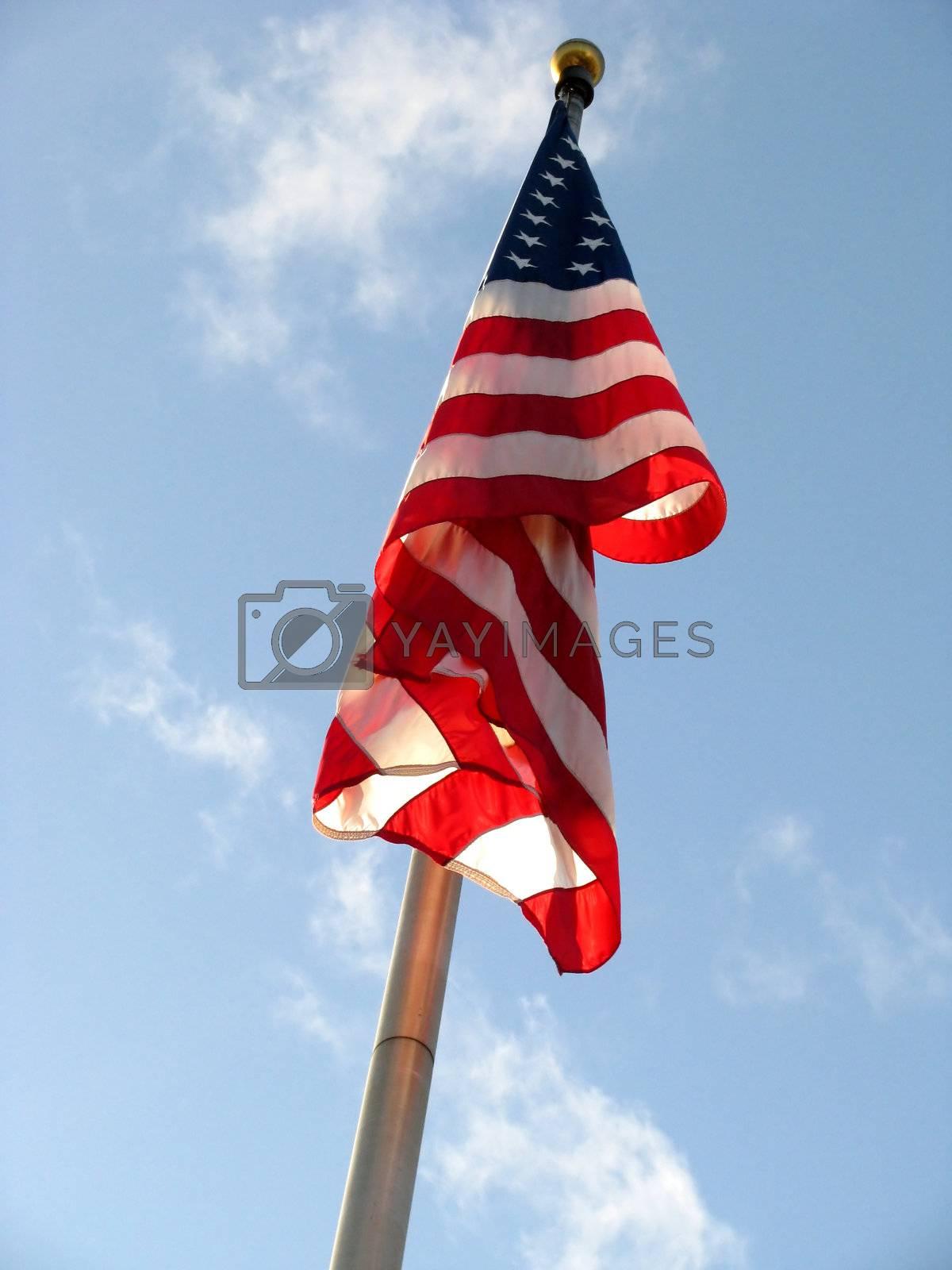 American Flag v2 by mwp1969