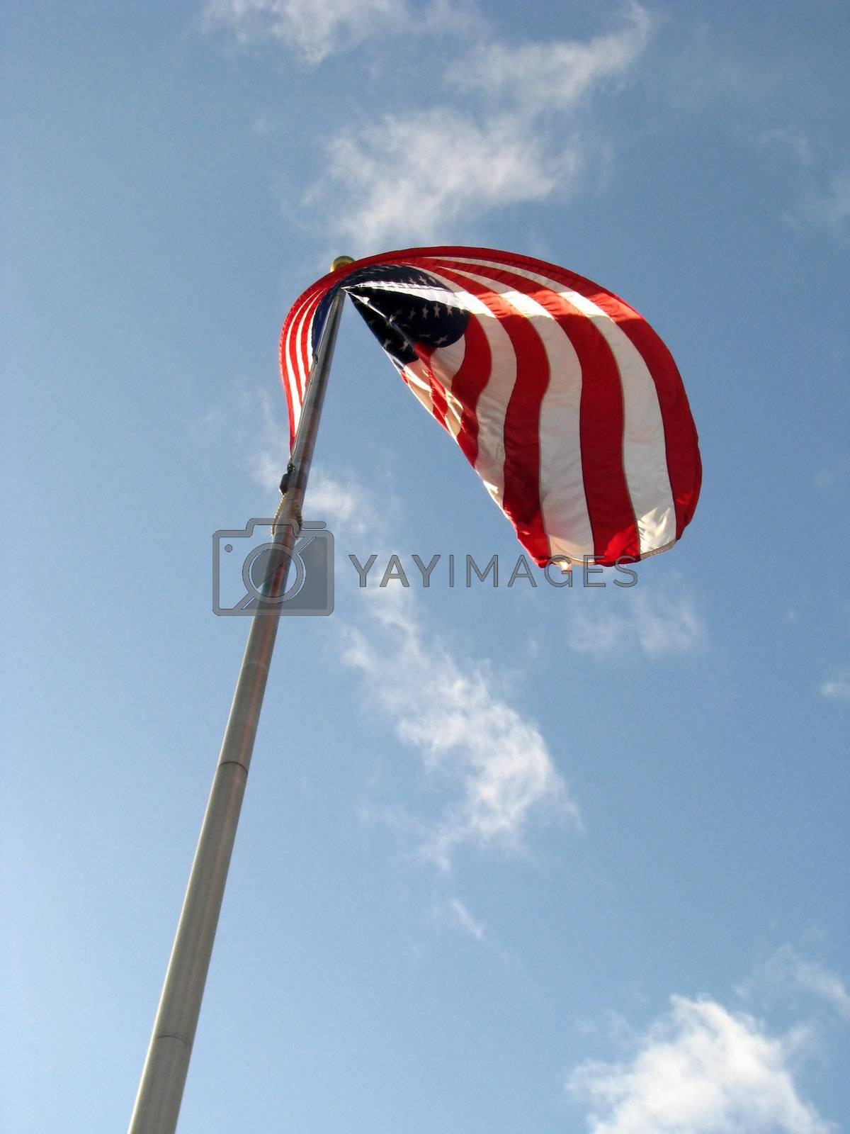 American Flag v1 by mwp1969