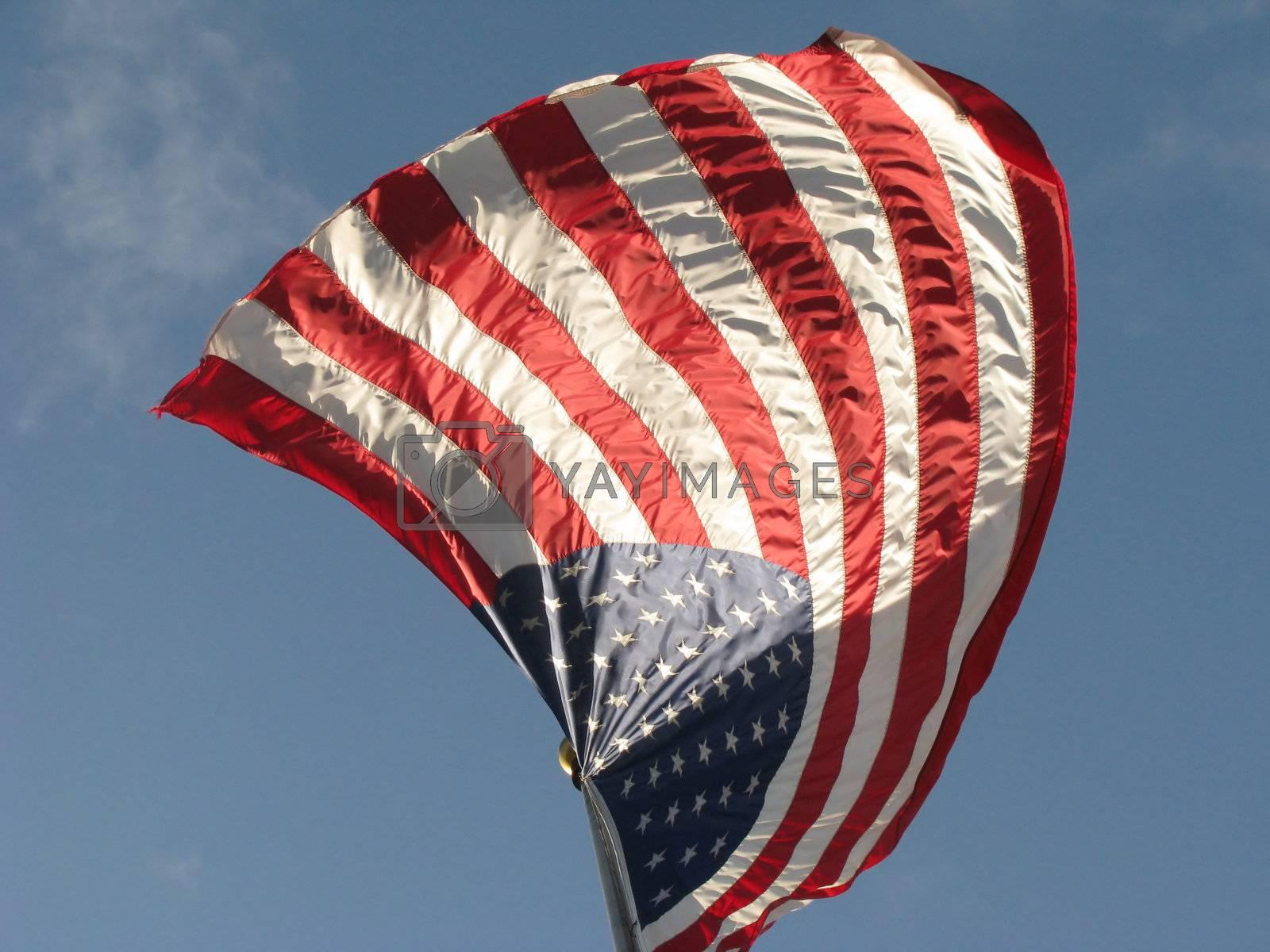 American Flag v4 by mwp1969