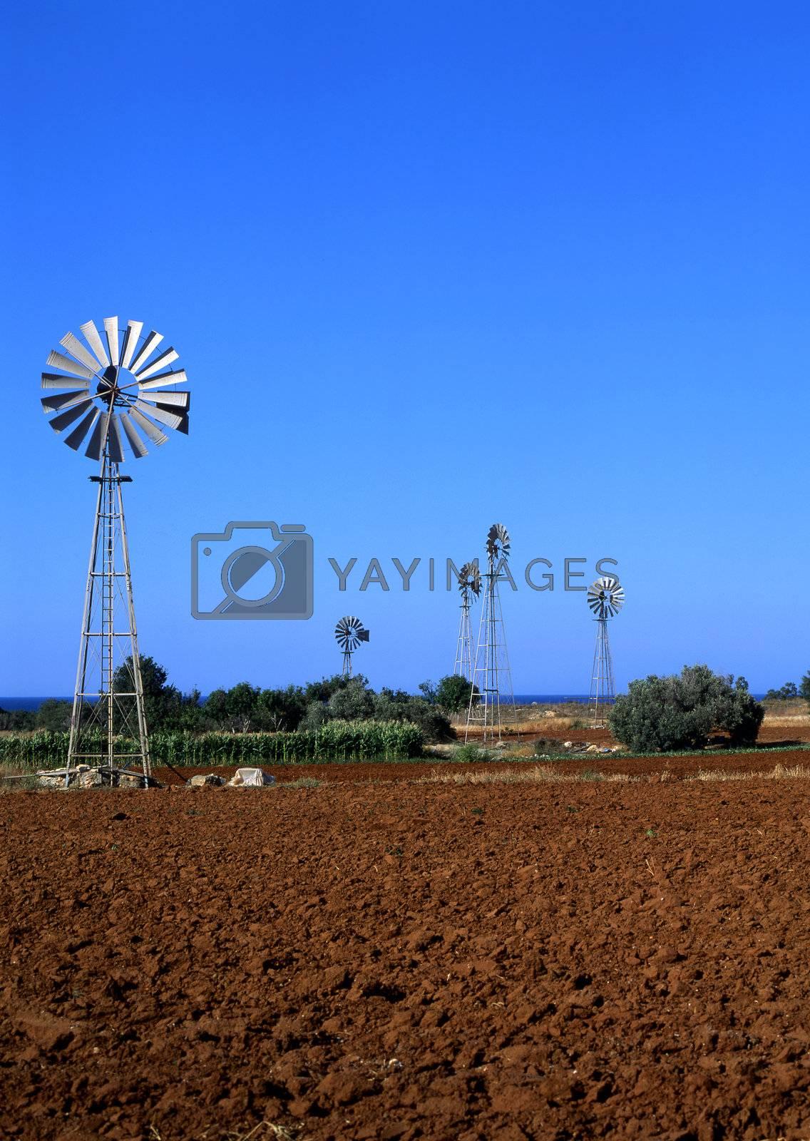 Irrigation by runamock