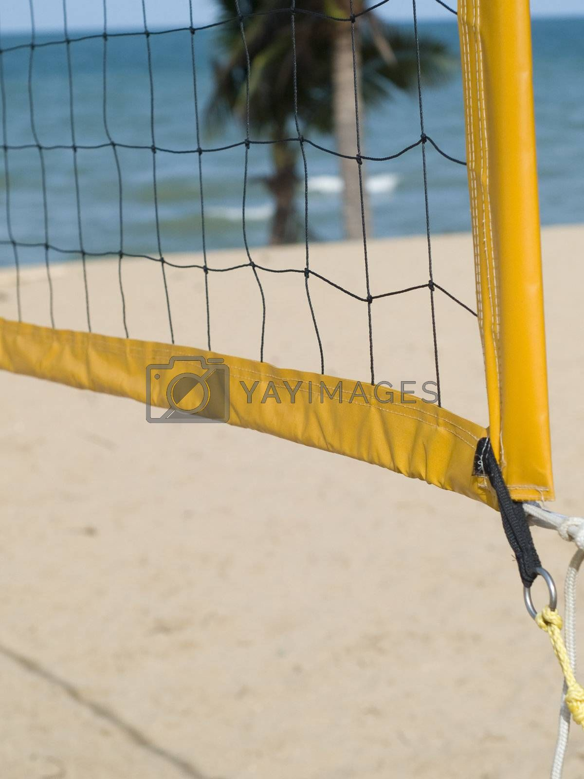Detail of volleyball net by epixx