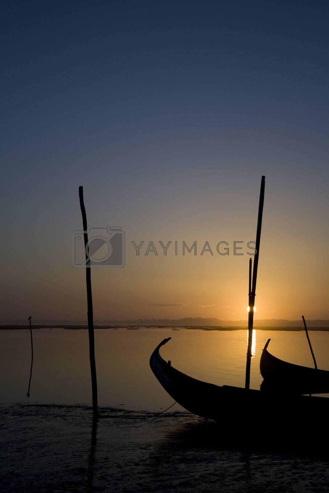 Moliceiro boat on sunset by PauloResende