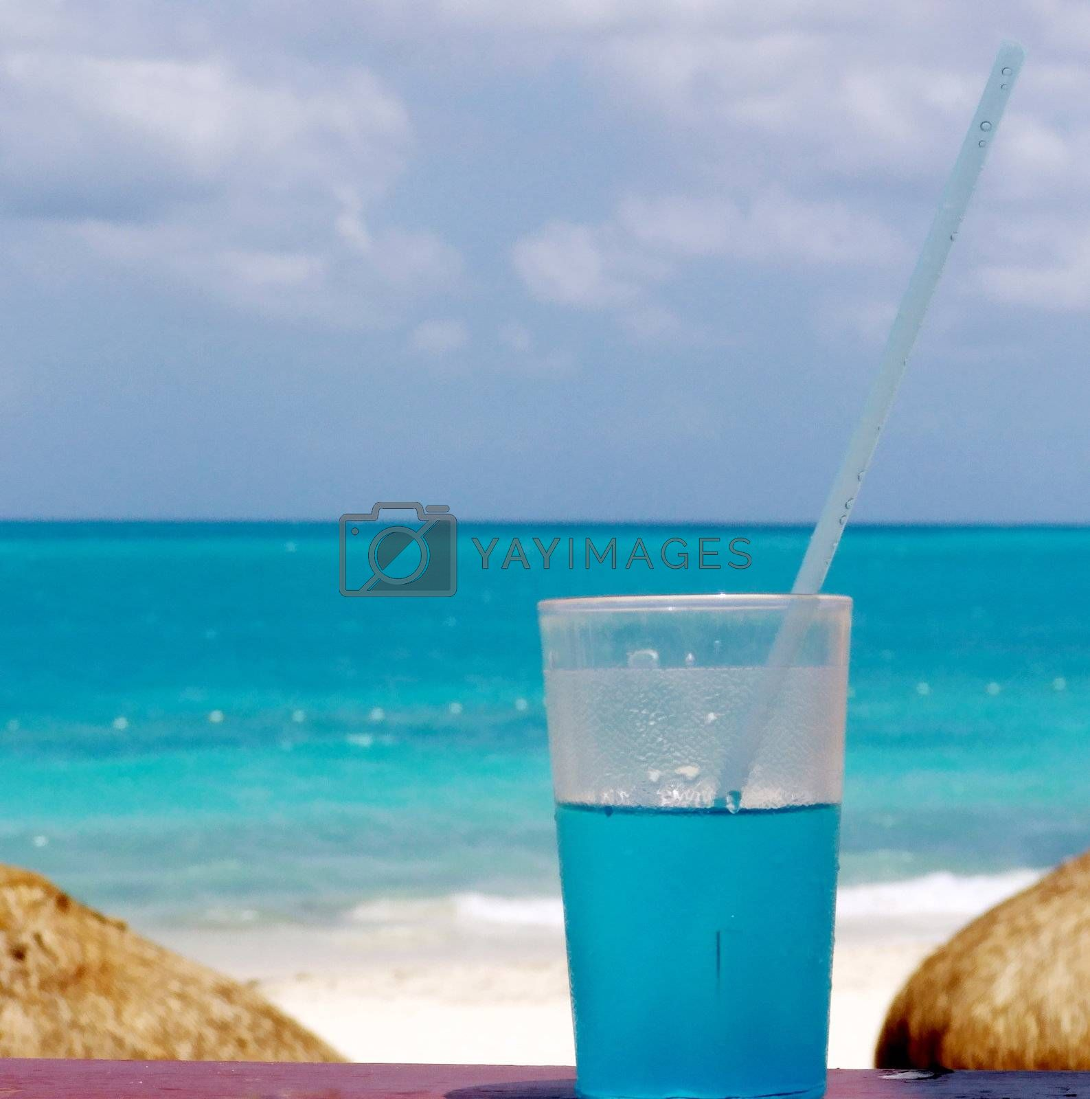 Cool drink for hot summer by Vividus