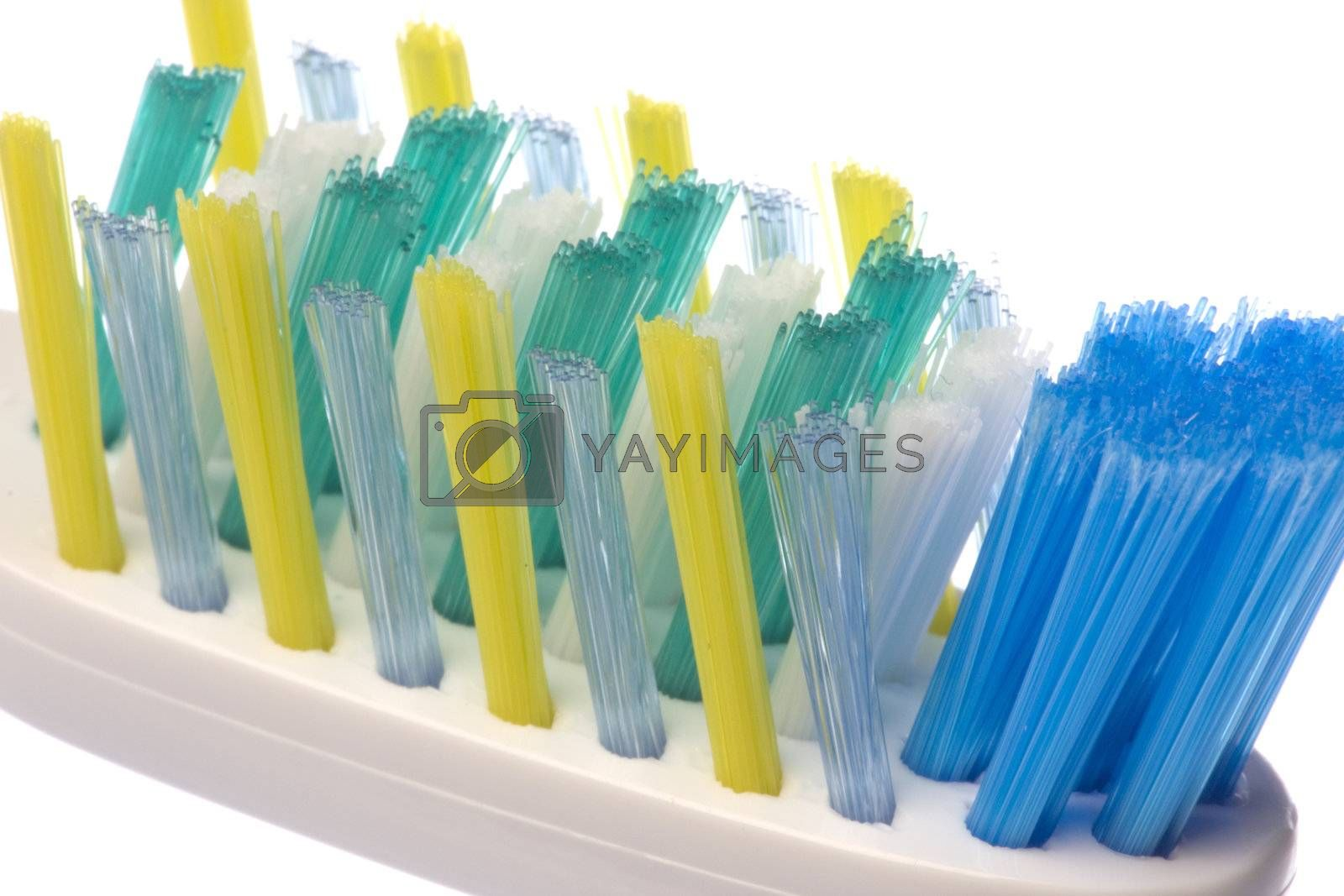 Isolated macro image of a toothbrush.