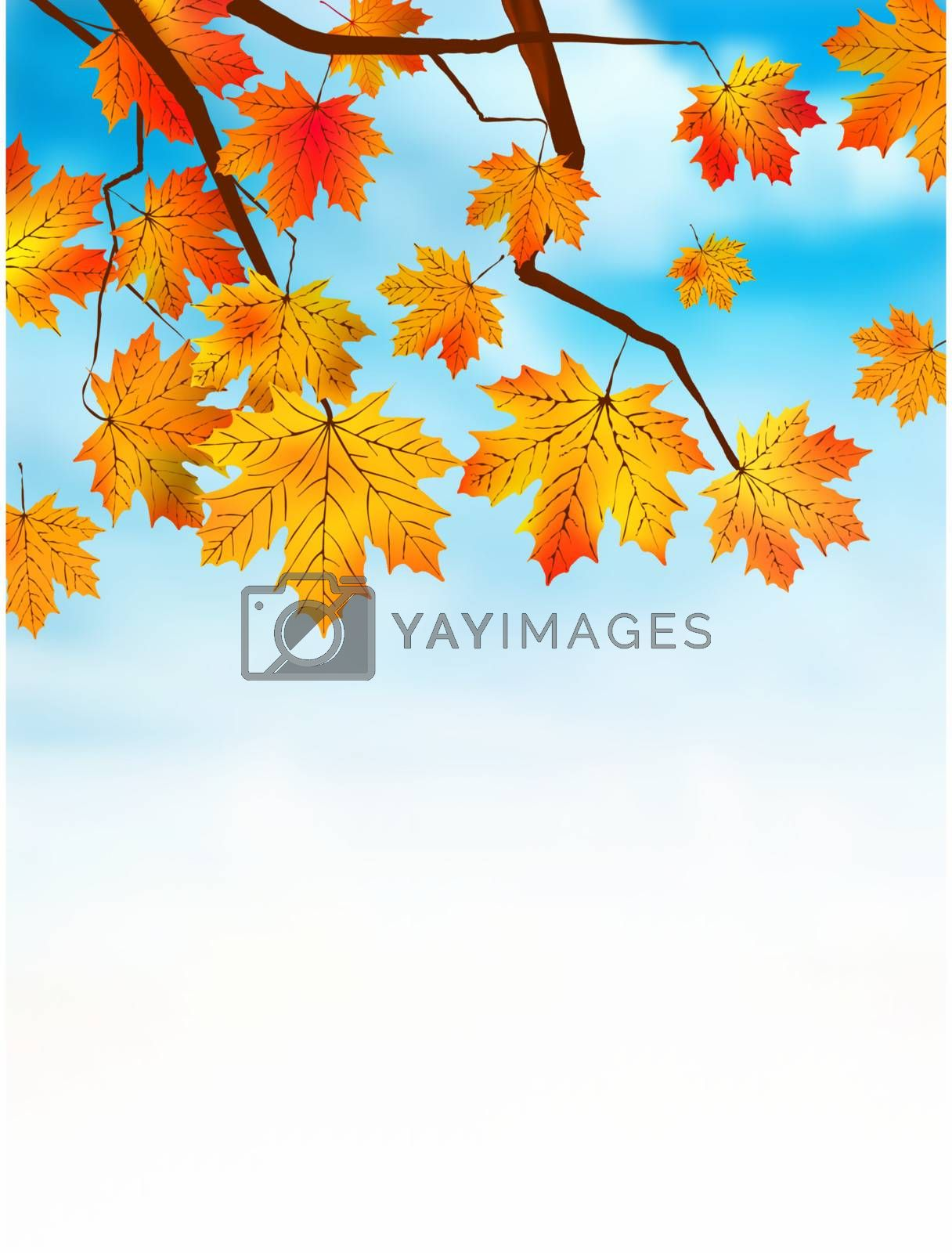 Autumn colored leaf on blue sky. EPS 8 vector file included