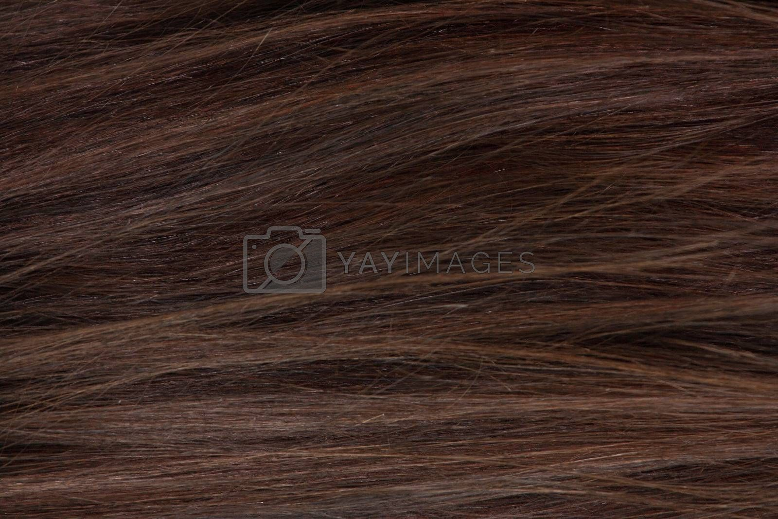 Close up hairs texture to background by BDS