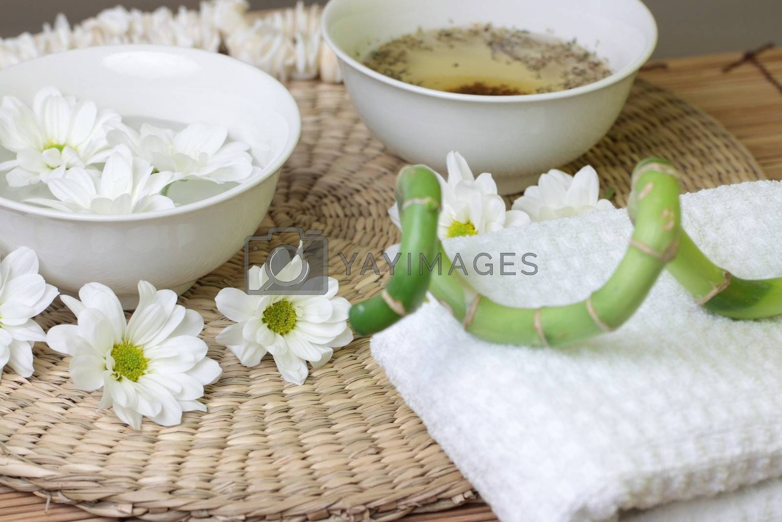 Spa design with herb and daisy