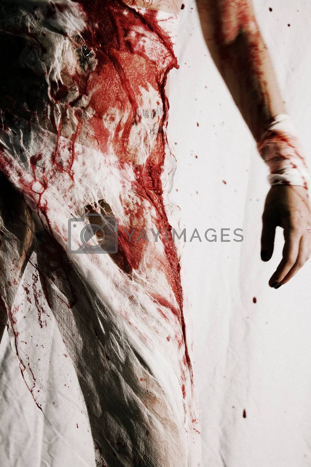 Horror Wrapped in Cloth and Blood