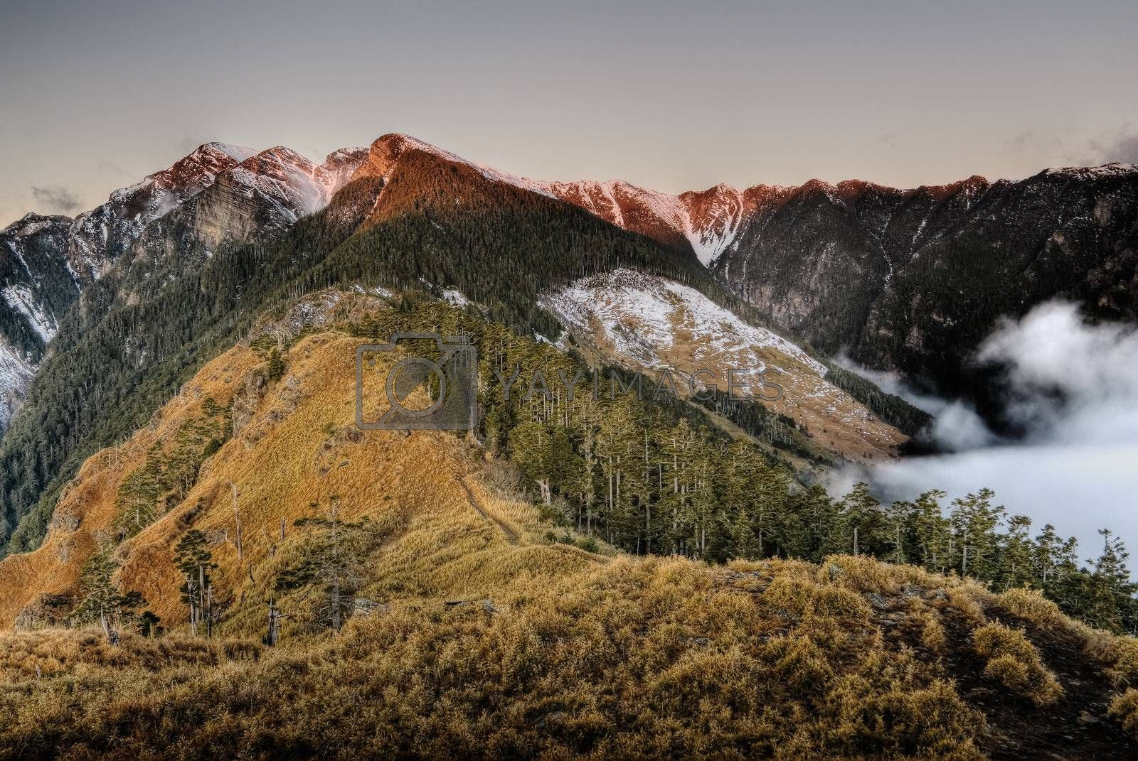 Beautiful mountain landscape with snow peak, grassland and forest in sunrise in Taiwan, Asia.