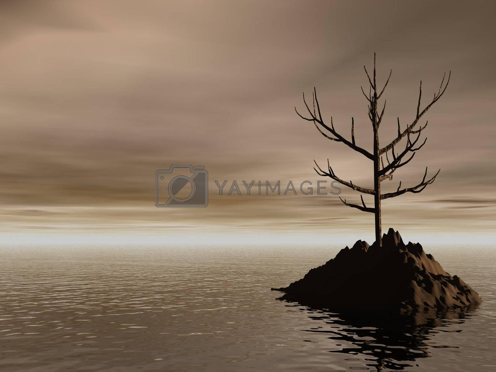 lonely rock in the dark ocean