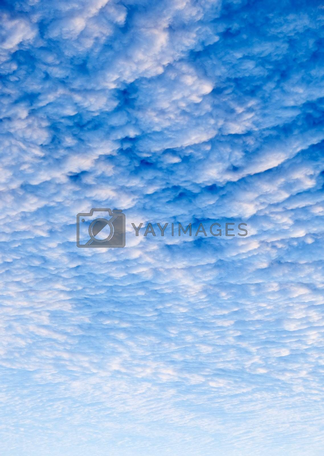 A cloud sunset background, blue and pink