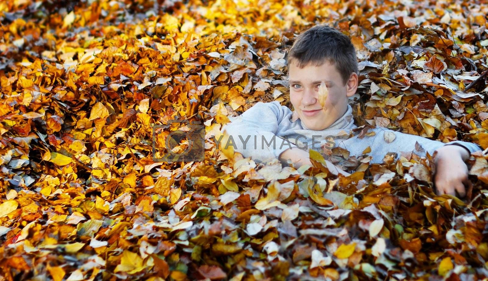 Happy boy in yellow and orange autumn leaves