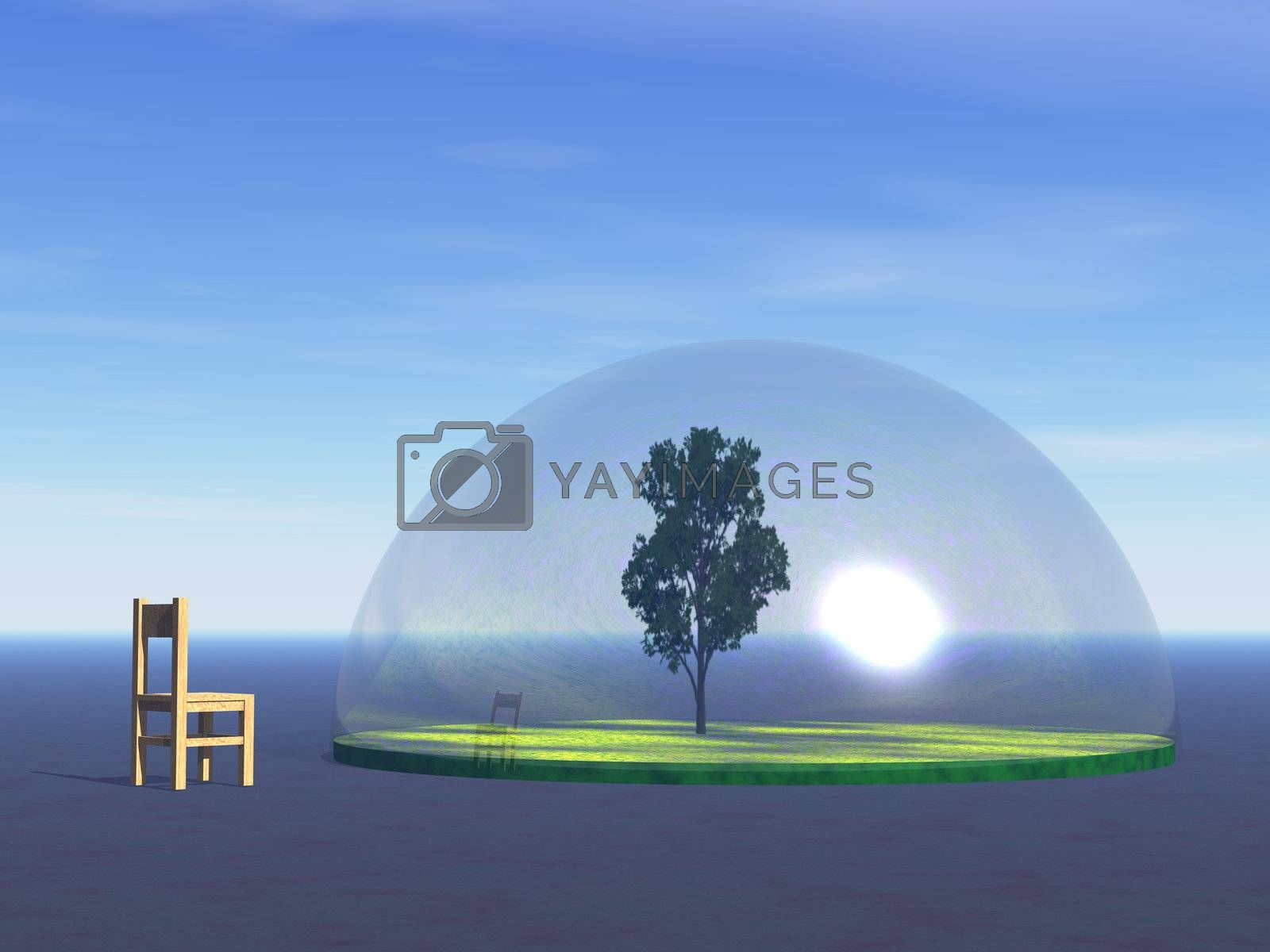 tree under a glass dome and wooden chair - 3d illustration