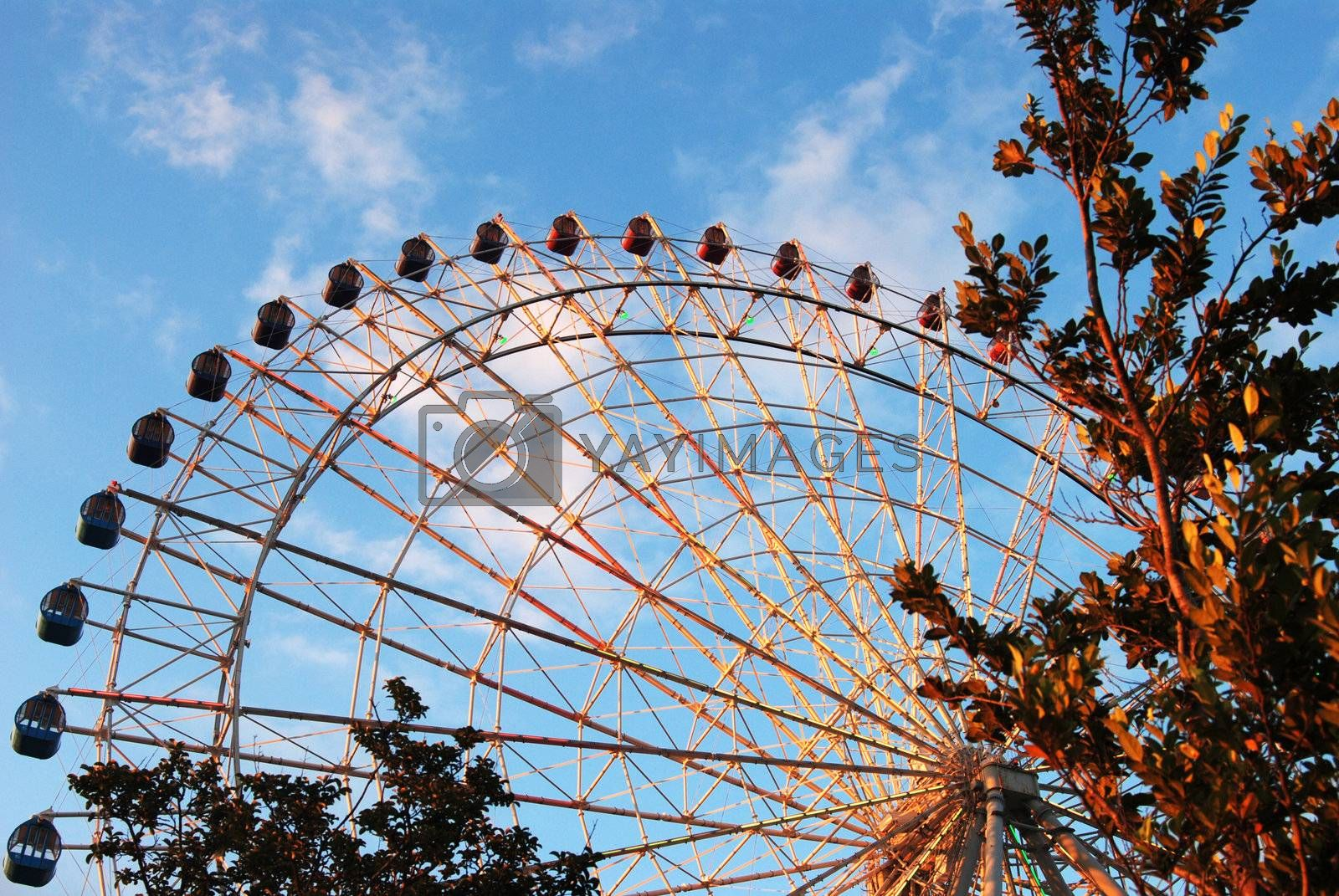 Large view of ferris wheel. framed by leaves right and bottom against blue sky