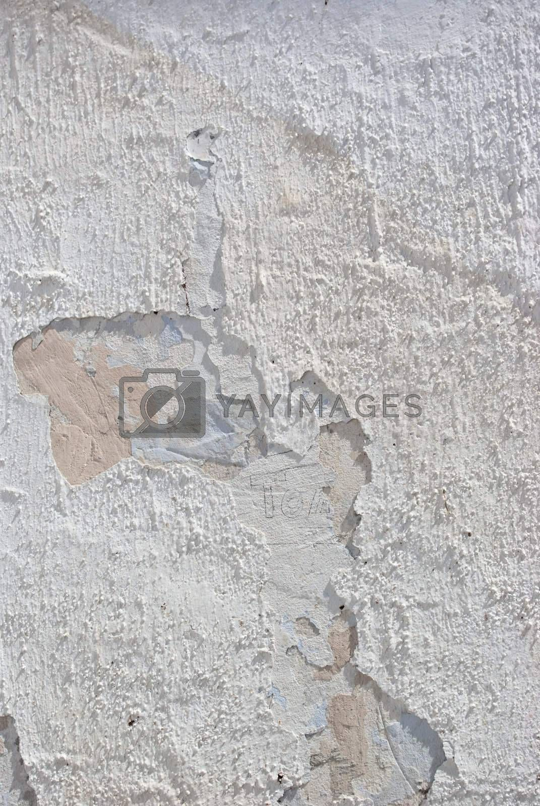 Grunge cement  all: can be used as background