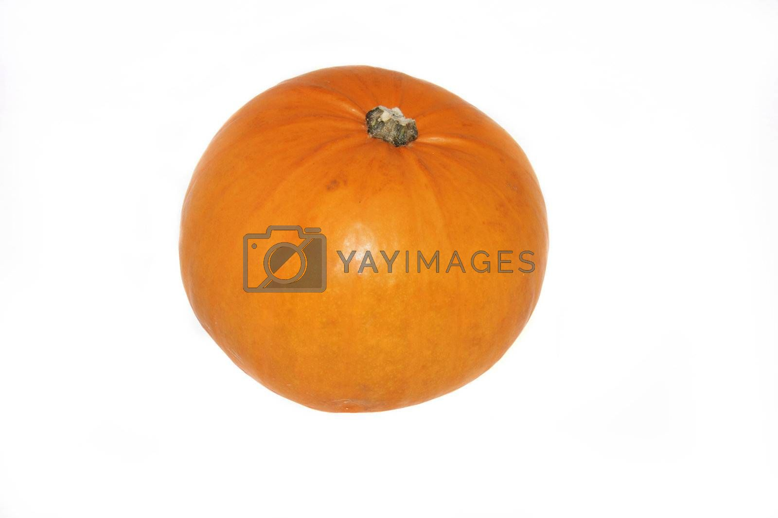 large pumpkin isolated over a white background