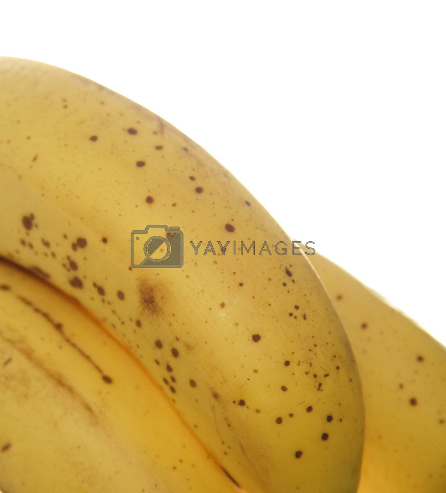closeup shot of bananas with a white background