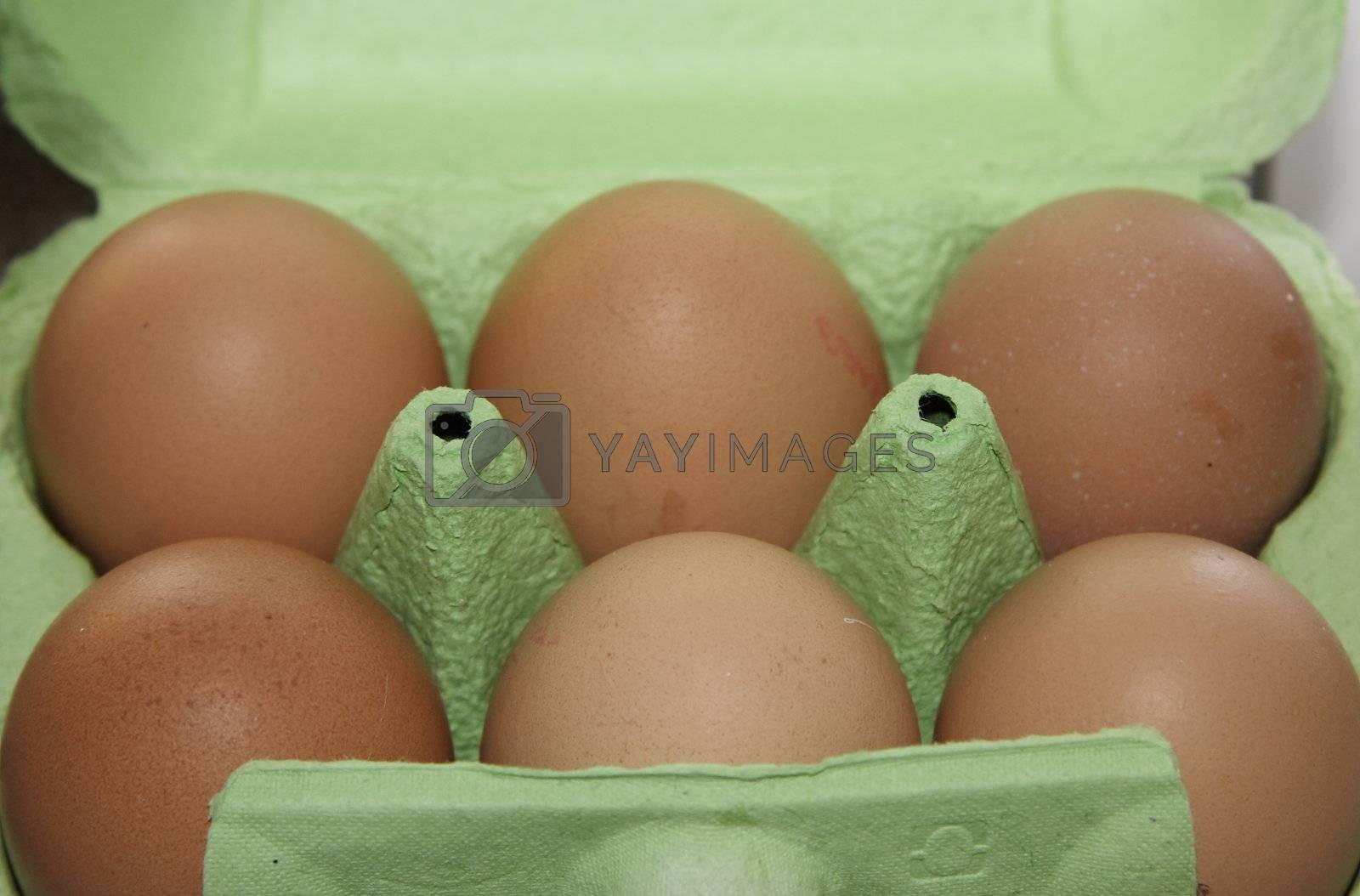 half a dozen eggs boxed in a green box