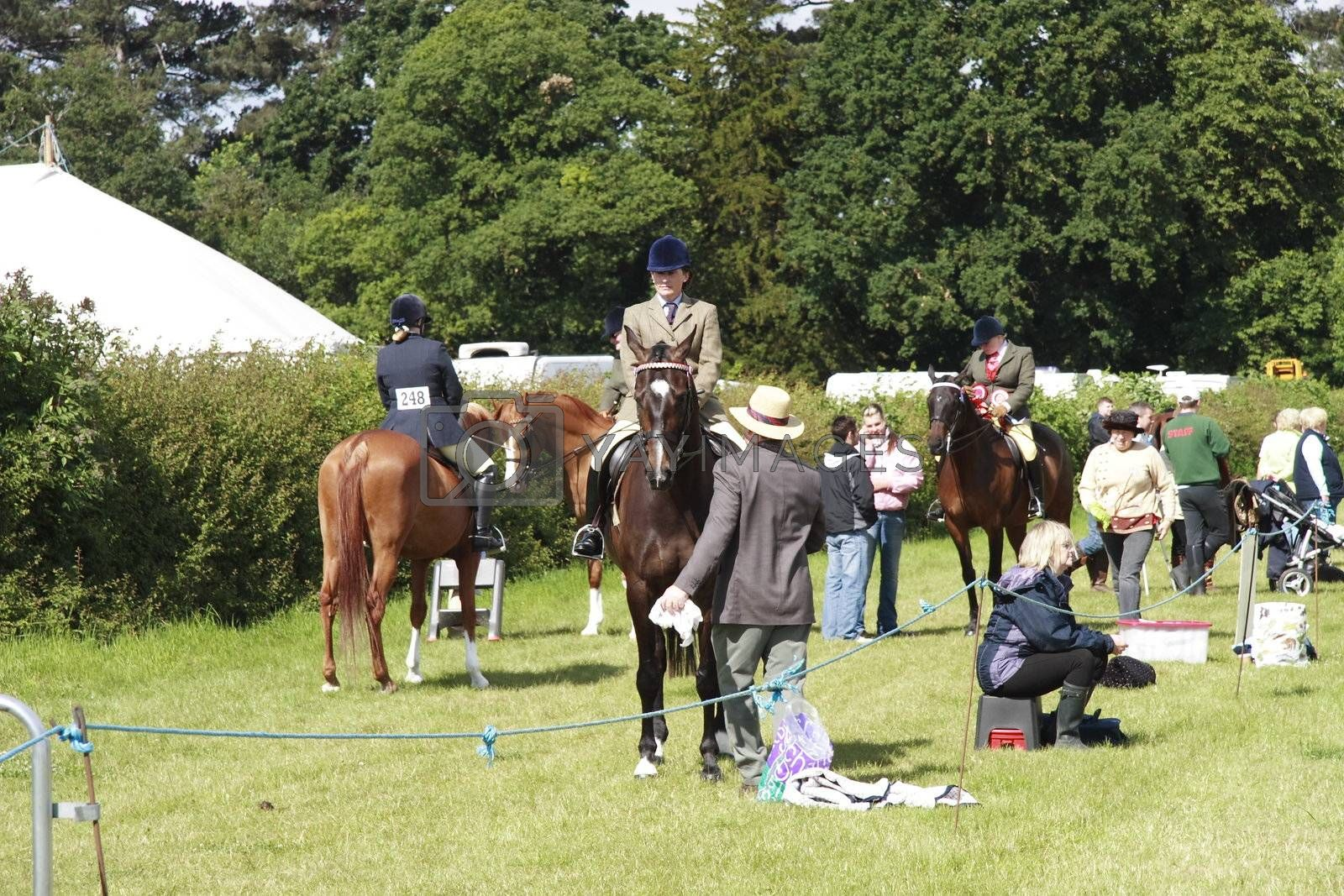 horses and riders preparing to be shown in the ring at the  Derbyshire county show 2008
