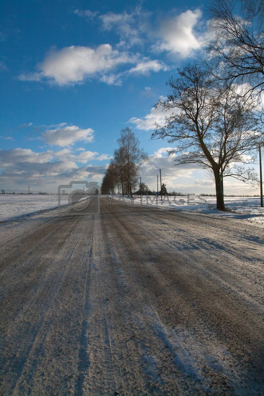 A snow covered rural landscape in the countryside Lithuania