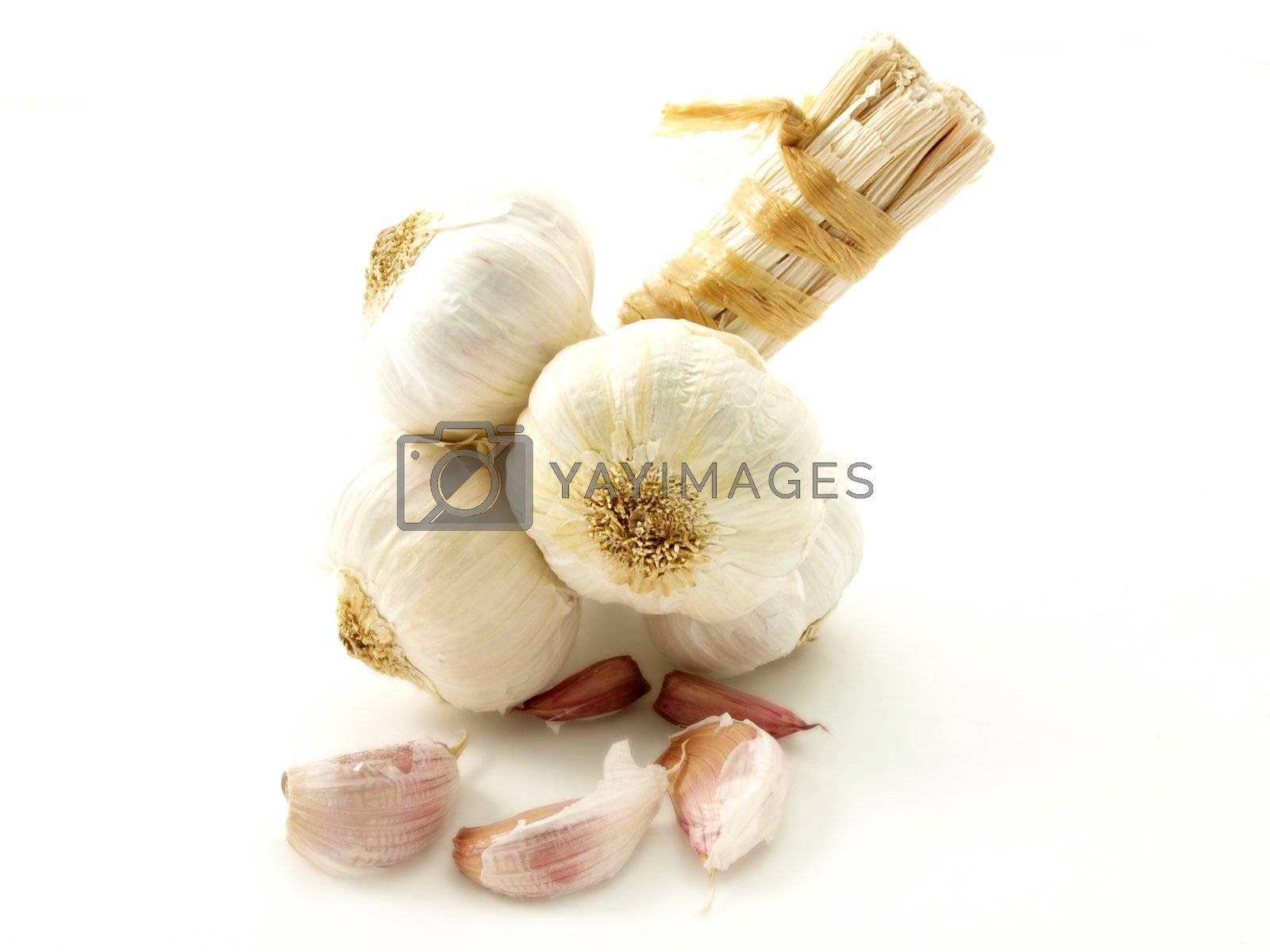 Garlic by AB_Photostudio