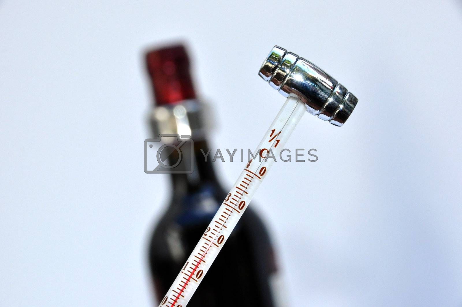 Royalty free image of Wine beverage apparatus by afonsoasneves