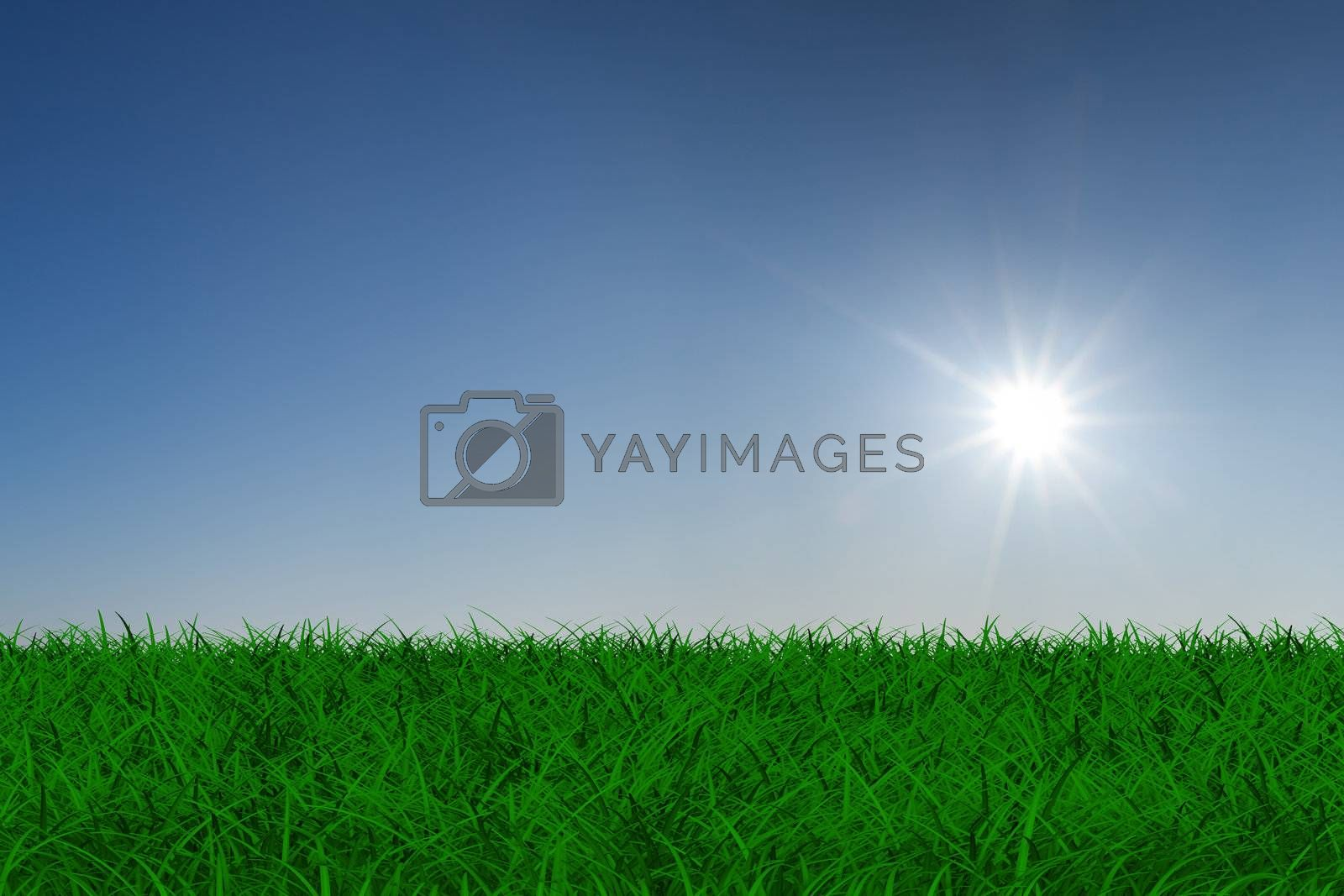 Royalty free image of sun over green meadow. Isolated 3D image by ISerg