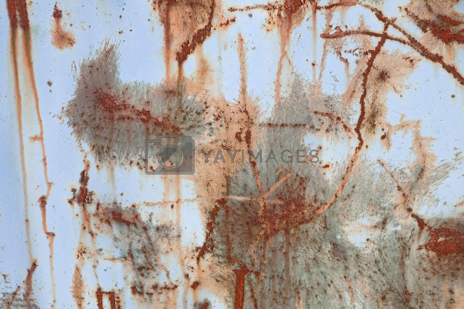 Royalty free image of Grunge Background by gemenacom
