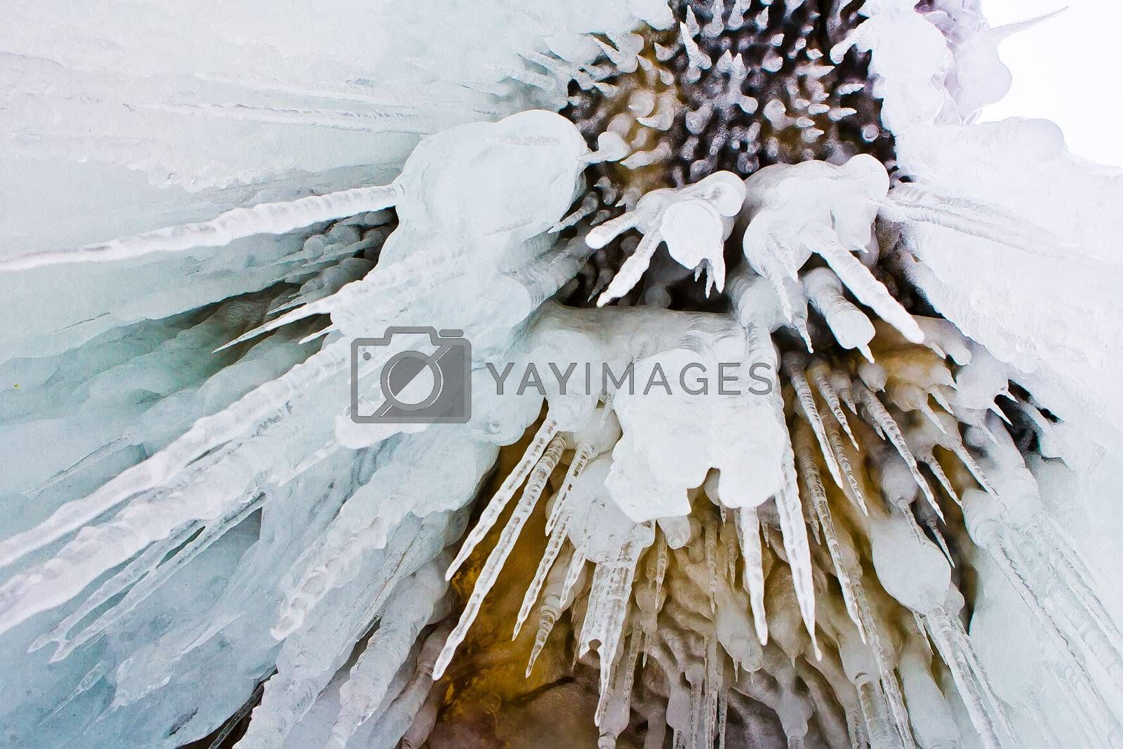 Royalty free image of Dangerous icicles by shamanov