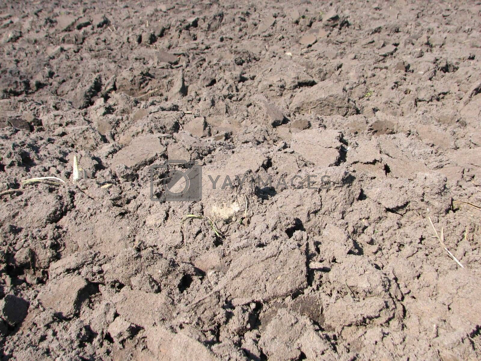 Plowed Field, usable as Earth or Sand Background