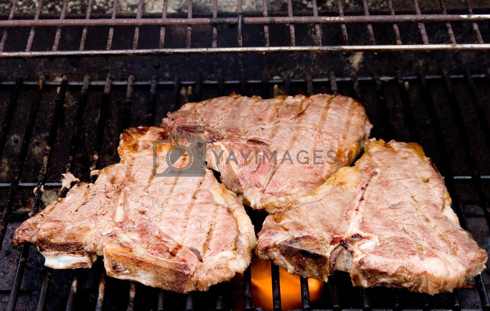Delicious t-bone steaks cooking on a outdoor grill.