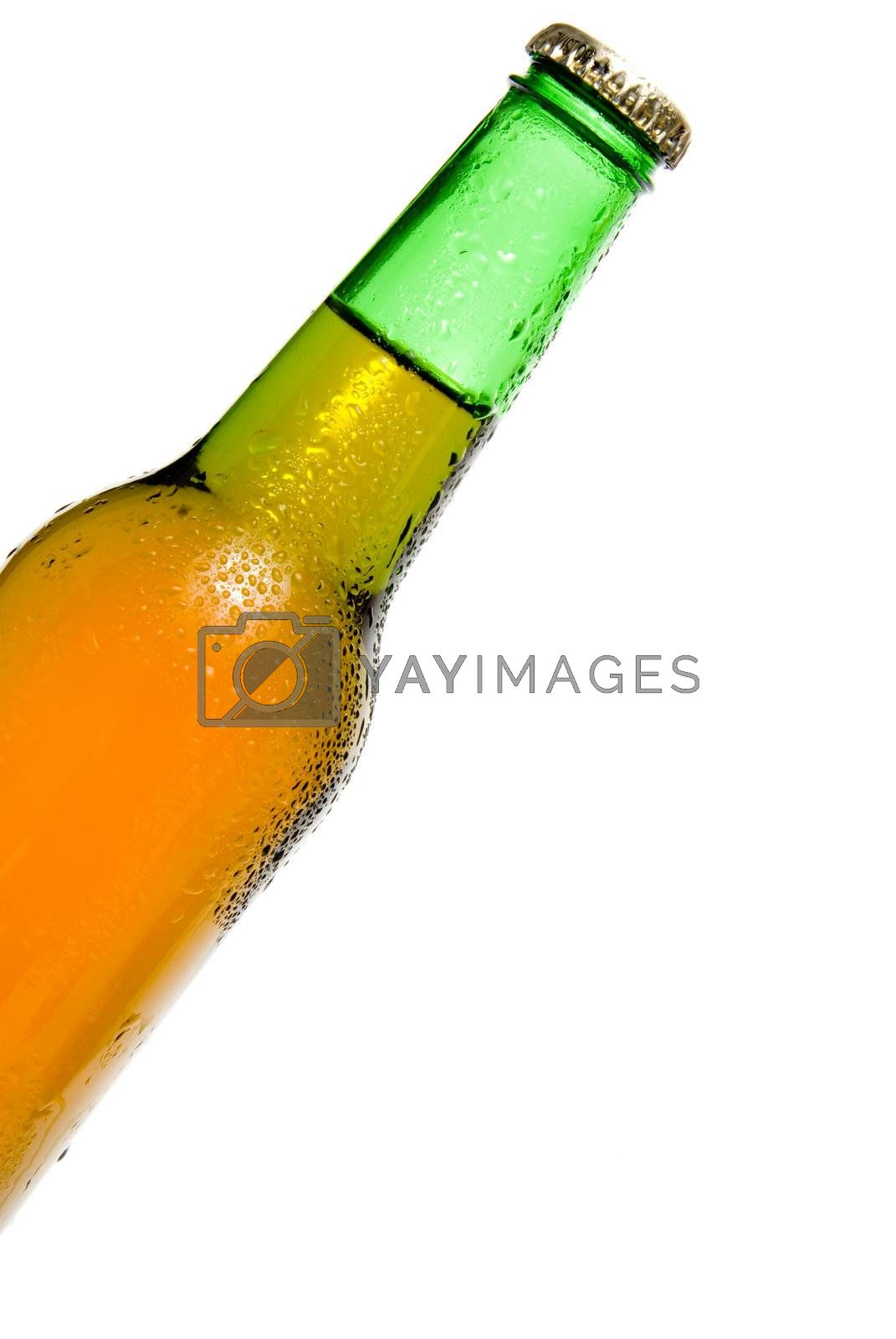 Royalty free image of Cold Beer by robeo