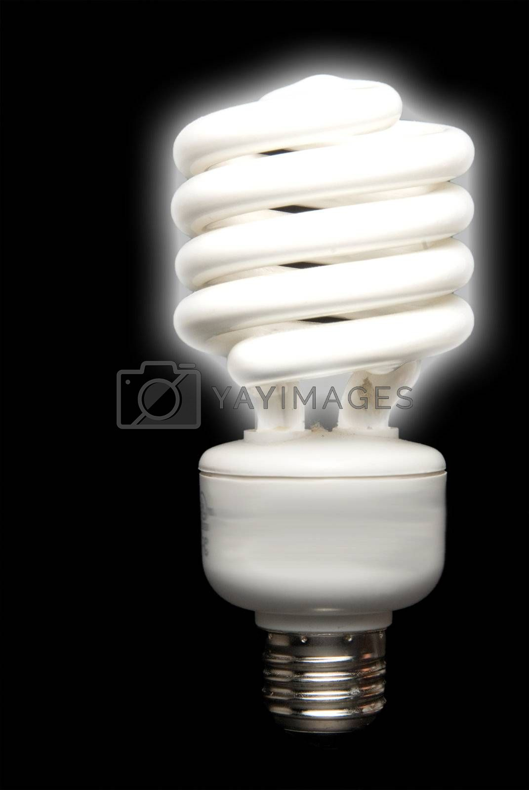 Royalty free image of Florescent Bulb by robeo