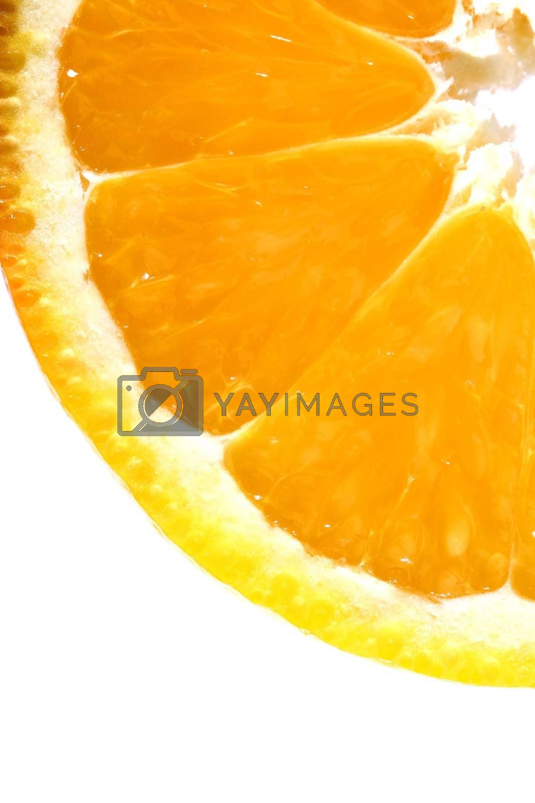 orange slice macro close up