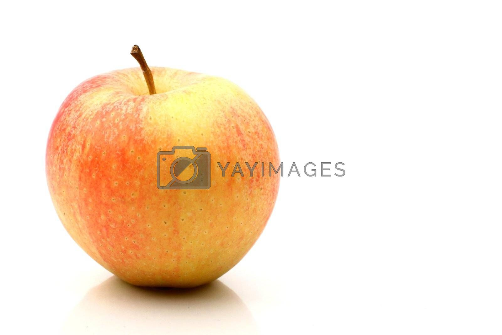 one apple isolated on white background