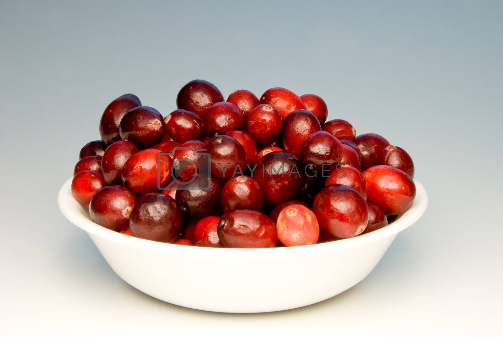 Delicious and healthy cranberries in a white bowl.